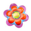 popping-purple-magic-flowerpot-birds-eye-view
